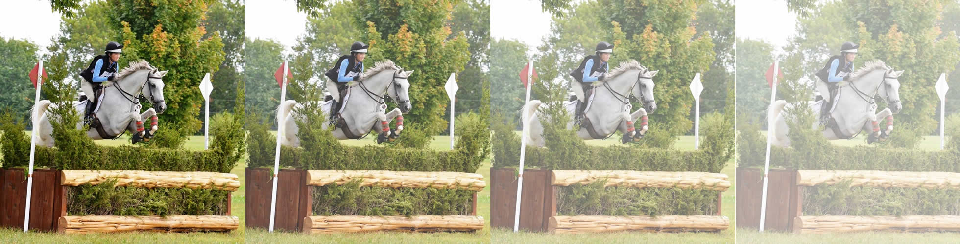 Eventing at Spring Run Farm